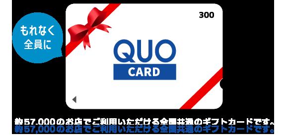 約57,000のお店でご利用いただける全国共通のギフトカードです。